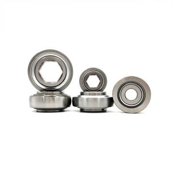 Car Needle Roller Bearing with Rubber Outer Ring Dgx264